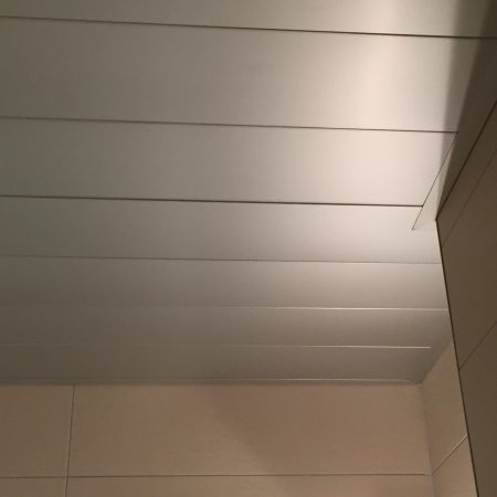 plafond SDB (2)