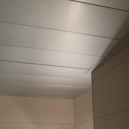 plafond SDB (5)